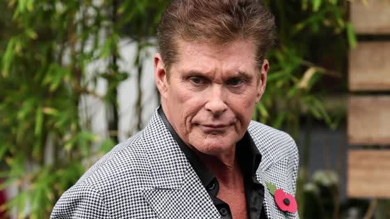 David Hasselhoff might be the world's most famous...