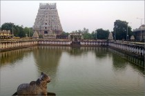 The Thillai Nataraja Kovil in Chidambaram with the temple tank and a sculpture of the Nandi in the forefront.